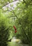 Portfolio Luftakrobatik Dragon Swing 2 Kopie